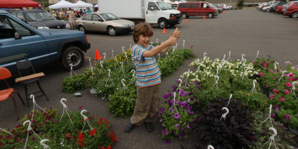Farmers Market Spring